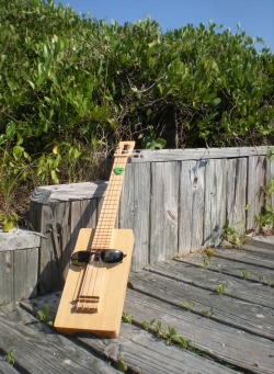 Mr. UkuleleHead on the boardwalk, wary of snakes